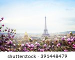 skyline of paris city roofs... | Shutterstock . vector #391448479