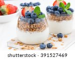 diet dessert with yogurt ... | Shutterstock . vector #391527469