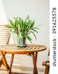 vase plant on table around... | Shutterstock . vector #391625578