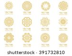 set pattern geometric gold logo.... | Shutterstock .eps vector #391732810