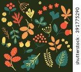 vector set of leaves  acorns ... | Shutterstock .eps vector #391775290