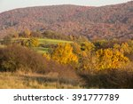 czech republic  bohemia ... | Shutterstock . vector #391777789