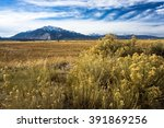 view of the rocky mountains ... | Shutterstock . vector #391869256
