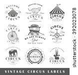 Set Of Circus Labels. Elements...