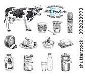 vector hand drawn illustration... | Shutterstock .eps vector #392023993