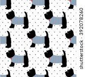 Scottish Terrier In A Sailor T...