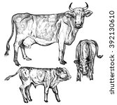vector illustration. hand... | Shutterstock .eps vector #392130610