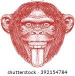 crazy monkey face  chimpanzee