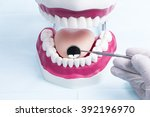 image shows a dental jaw model... | Shutterstock . vector #392196970