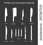 vector illustration of types of ... | Shutterstock .eps vector #392287519