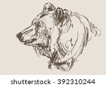 bear vector  hand draw sketch  | Shutterstock .eps vector #392310244