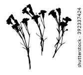 carnation silhouettes  three... | Shutterstock .eps vector #392337424