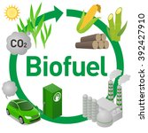 biofuel life cycle  biomass... | Shutterstock .eps vector #392427910