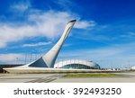 sochi  russia   march 2  2016 ... | Shutterstock . vector #392493250