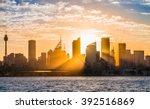 golden sun rays coming through... | Shutterstock . vector #392516869