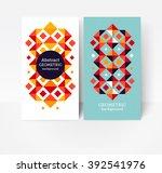 geometric design element.... | Shutterstock .eps vector #392541976