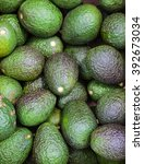 Small photo of avocado aguacate