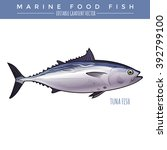 tuna. marine food fish | Shutterstock .eps vector #392799100