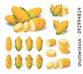 corn vector | Shutterstock .eps vector #392994814