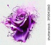 Beautiful Purple Rose Closeup...