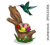 Bright Bird Hummingbird Flying...