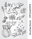 hand drawn set of herbs and... | Shutterstock .eps vector #393160594
