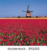 nature view | Shutterstock . vector #393203