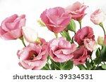 pink flower | Shutterstock . vector #39334531