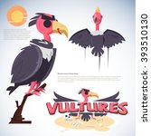 Vulture Character Design. Set...