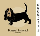 dog breed basset hound on a... | Shutterstock .eps vector #393534250