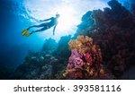 free diver swimming underwater... | Shutterstock . vector #393581116