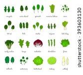 hand drawn popular types of... | Shutterstock .eps vector #393603130