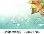 The Autumn Leaves And  Rain...