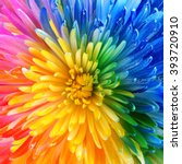 Colorful Rainbow Flower...