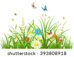 Green Grass With Flowers And...