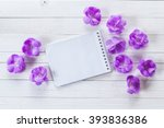 Background With Violet Flowers...