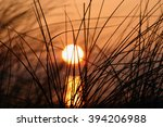 sunset | Shutterstock . vector #394206988