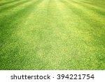 grass field   green grass... | Shutterstock . vector #394221754