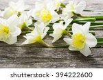 white daffodil flowers on old... | Shutterstock . vector #394222600