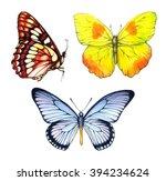 watercolor set butterflies... | Shutterstock . vector #394234624