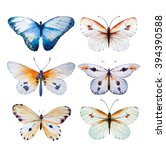 Stock photo set of watercolor butterfly vintage summer isolated spring art watercolour illustration design 394390588