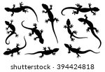 Lizard Silhouettes On The Whit...