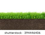 green grass with in soil... | Shutterstock . vector #394446406