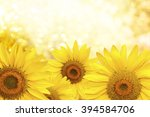 background made of  yellow... | Shutterstock . vector #394584706