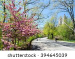 spring landscape in the central ... | Shutterstock . vector #394645039