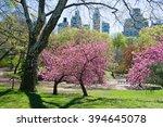 spring landscape in the central ...   Shutterstock . vector #394645078