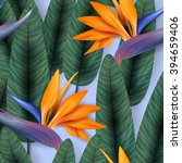 strelitzia pattern. tropical... | Shutterstock .eps vector #394659406