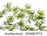 bamboo leaves on white... | Shutterstock . vector #394887973