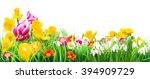Easter Eggs   Flower Meadow ...