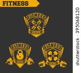 logo for fitness and gym.... | Shutterstock .eps vector #395068120